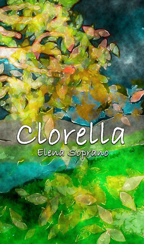 Clorella IT